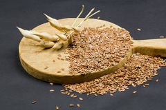 Still life composition with wooden kitchen cutting board, dried radish pods and flax seeds Stock Images