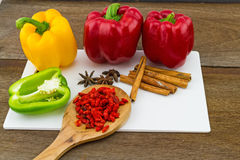 Still – life concept sweet bell pepper (capsicum) and assorted  spices for China Pharmaceutical Equipment Stock Image