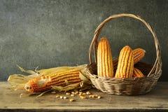 Still Life With corn Royalty Free Stock Photos