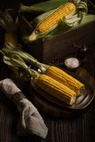 Still life with corn cobs ready to frying Stock Image