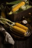 Still life with corn cobs ready to frying Royalty Free Stock Photos