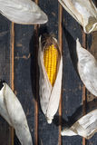 Still life of corn, lettuce, potatoes and garlic. Country style Stock Images