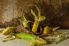 Still life with corn Royalty Free Stock Photo