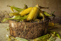 Still life with corn Royalty Free Stock Photos
