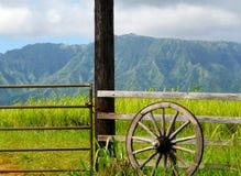 Still life at countryside Royalty Free Stock Photos