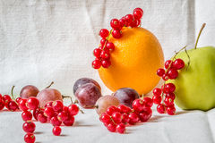 Still life with cranberry, grapes, oranges and apples. In the studio Royalty Free Stock Image