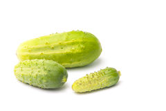 Still-life with cucumbers Royalty Free Stock Photography