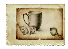Still Life with cup Stock Images