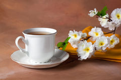 Still life with cup of tea and cherry blossom Royalty Free Stock Photo