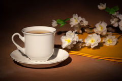 Still life with cup of tea and cherry blossom Royalty Free Stock Photos
