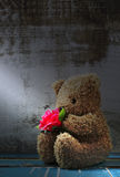 Still life of cute bear doll holding rose bouquet Royalty Free Stock Images