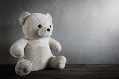 Still life of a cute teddy bear Royalty Free Stock Image