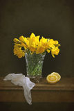 Still Life Daffodils Stock Image