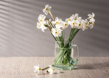 Still life with daffodils Stock Photo