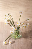Still life with daffodils Stock Photography
