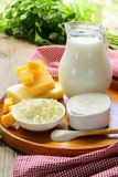 Still life of dairy products Royalty Free Stock Image