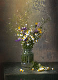Still life with daisies. And wild flowers Royalty Free Stock Photos