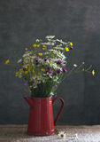 Still life with daisies. And wild flowers Royalty Free Stock Image