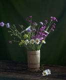 Still life with daisies. And wild flowers Royalty Free Stock Photography