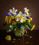 Still life with dandelions and daffodils. Still life with spring dandelions and daffodils stock photo