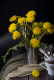 Still life with dandelions royalty free stock photography