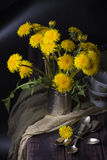 Still life with dandelions stock photography