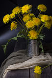 Still life with dandelions stock image