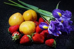 Still life on a dark table with irises, lots of strawberries and yellow plums with water drops.  Royalty Free Stock Photo
