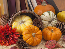 Still life with decorative pumpkins and old books. Small ornamental pumpkins, cones, and autumn leaves spilling out of a basket onto some rush matting. A row of Royalty Free Stock Photos