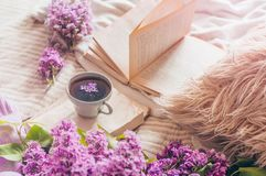 Still life details in home interior of living room. Sweaters and cup of tea with lilac flowers and spring decor on the books. Read, Rest. Cozy spring concept royalty free stock photo