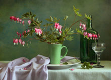 Still life with dicentra Royalty Free Stock Photography