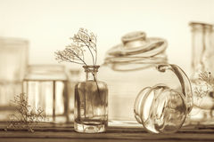 Still Life of Different Glassware - vintage style Royalty Free Stock Photos