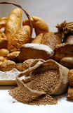 Still life with different kinds of bread close up Royalty Free Stock Photo