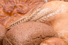 Still life of different kinds of bread Royalty Free Stock Image