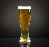 Still life with a draft beer by the glass Stock Image