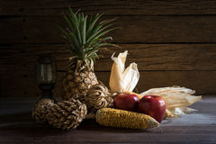 Still life dried fruit with lamp Royalty Free Stock Image