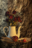 Still life with dried roses. A beautiful still life with dried roses and shells. An interesting background and dense saturated colors Stock Photo