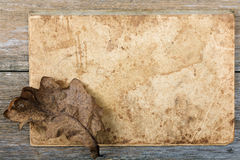 Still-life Dry oak sheet on an writing-book Stock Image