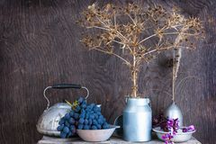 Still life with dry prairie prickly flowers and grapes Royalty Free Stock Photography