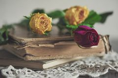 Still life with dry roses on the vintage lace fabric and old boo Stock Photo