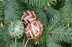 Still life with easter Easter eggs lying on fir-tree branches. Close-up, outdoors Stock Image