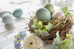 Still life with easter eggs in a nest and flowers Royalty Free Stock Image