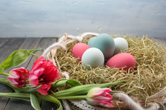 Still life with Easter nest and tulips Stock Photography