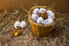 Still life eggs with emotion the basket Stock Image