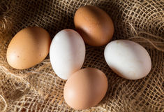 Still life eggs on sackcloth. Stock Photo
