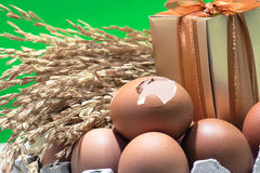 Still life with eggshells and eggs, paddy rice seed, gift box, colorful background Stock Images