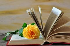 Still life with the exposed book and yellow rose Stock Photography
