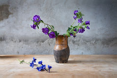 Still-life with fading flowesr  in a jug Stock Photo