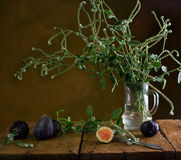 Still life with figs. And flowers Stock Images