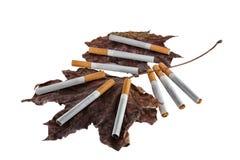 Still life of filter cigarettes Royalty Free Stock Photos